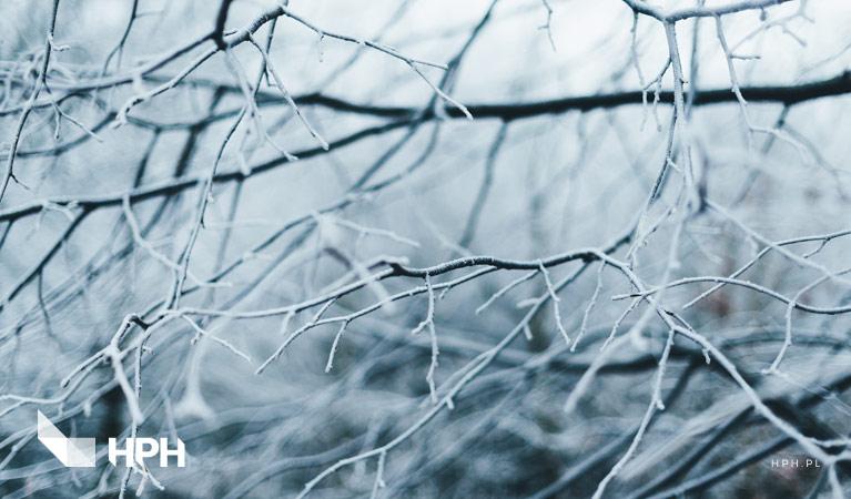 ubezpieczenia zima winter wyjazdy zimowe insurance oc ubezpieczyć się